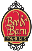 Bed and Barn