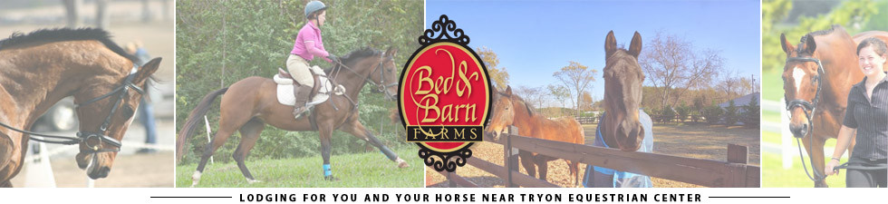 Bed and Barn Farms | Tryon NC Bed & Breakfast | Forest City NC